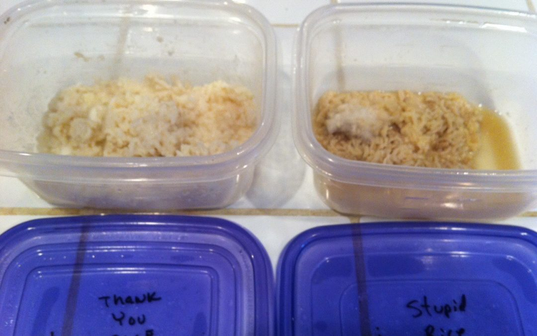 The Rice Experiment – This Will Blow Your Mind!