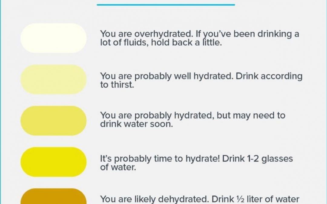 Hydration. How Much Water Is Necessary For Daily Hydration and Energy